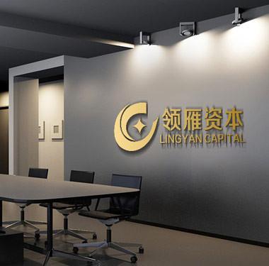 资本市场logo设计-令雁资本logo设计