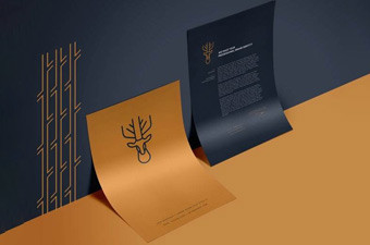 VI设计公司是企业品牌形象的建立者和缔造者
